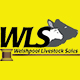 Newline Auction Software (NAS) goes live with Rhayader Livestock Sales